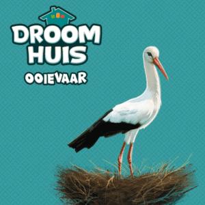 Droomhuis-Ooievaar